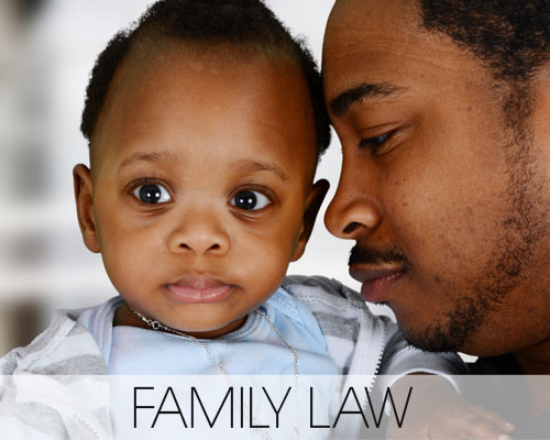 Top Family Lawyers in Georgia